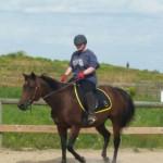 Chelsea - Paint horse (13 Jahre)