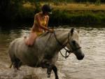 Raymist PirateModesty - Männlich Connemara Pony (7 Jahre)