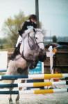 Concours Willow & Odyssée P2 - Connemara Pony (10 Jahre)