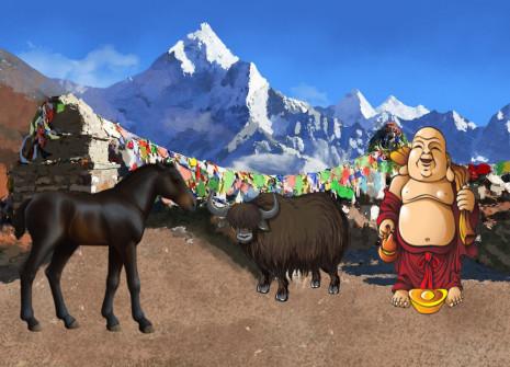 Aus dem Herzen des Himalayas herabgekommen hält das Bhutia-Pony nun seinen Einzug bei Horzer!