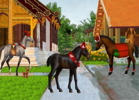Bringt eure Pferde mit exklusiven Fellen in Weihnachtsstimmung!